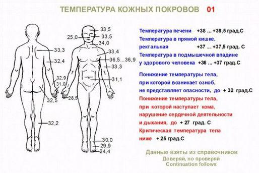 температура кожных покровов