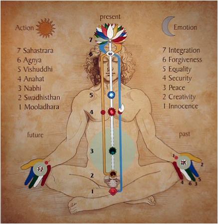 человеческое тело в символике