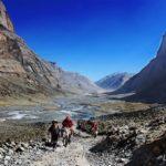 5 tibet_vneshnyaya_kora_loshadi
